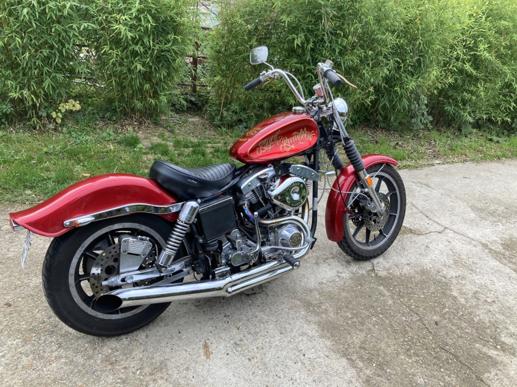 Low rider Shovelhead Img_5810