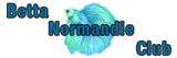 Betta Normandie Club