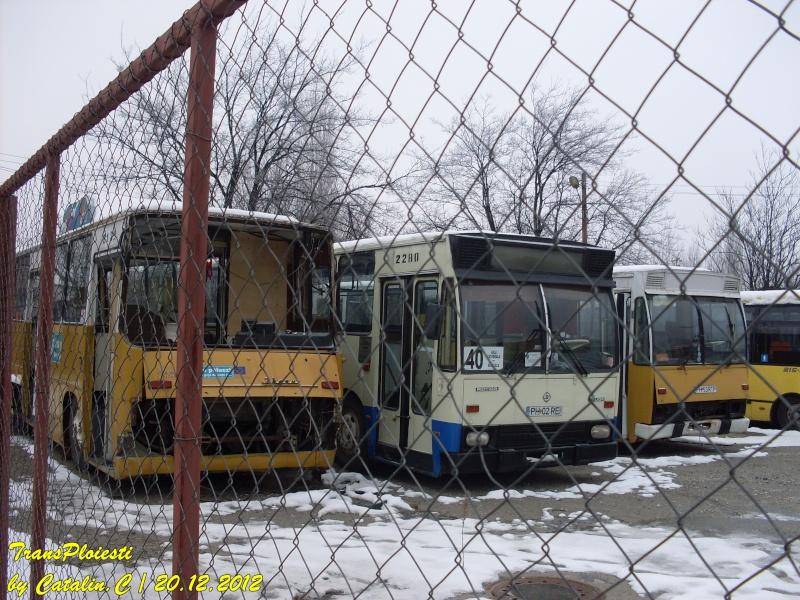 Parcul Rece Sdc11944