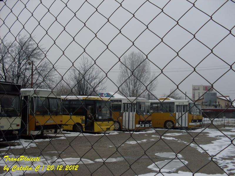 Parcul Rece Sdc11945