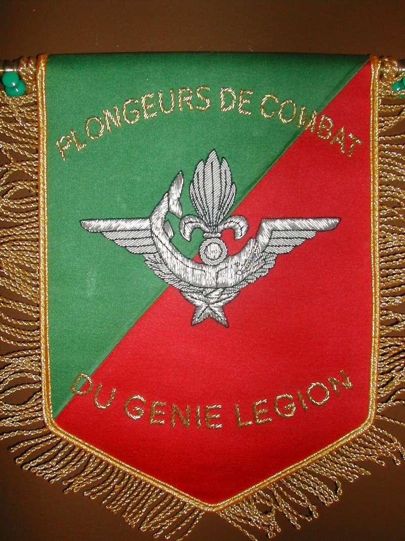 Ma collection sur les fanions légion Tome V Dscn3315