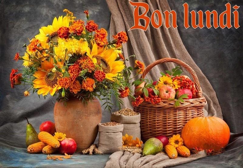 Les bonjours et contacts jounaliers du Mois de Janvier 2019 14011910