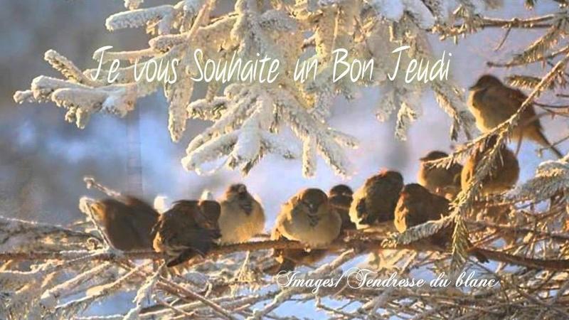 Les bonjours et contacts jounaliers du Mois de Janvier 2019 - Page 2 31011910