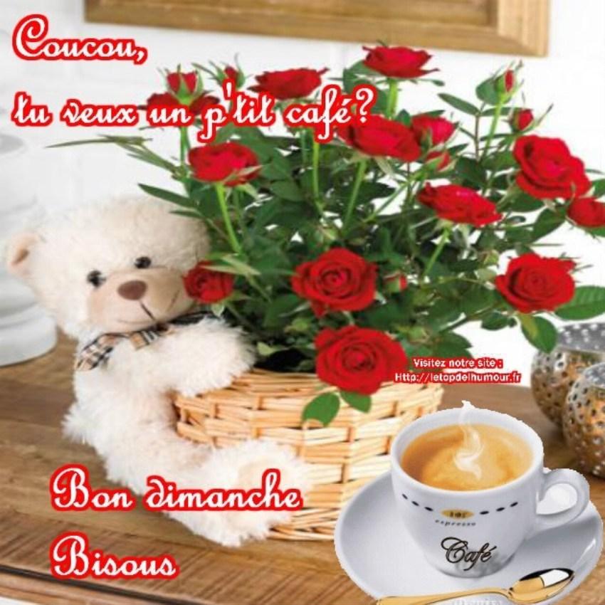 Les bonjours et contacts jounaliers du Mois d' Août 2019 Coucou10