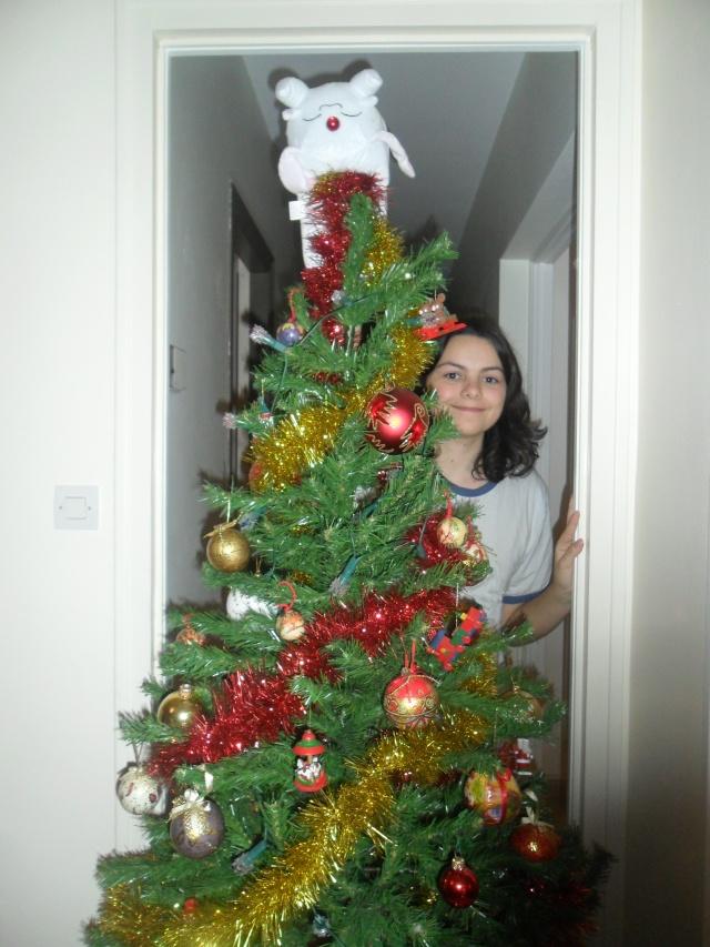 Vote pour le concours Noël Clamp 2012 ! Sam_0011