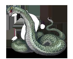 Kirachy [NPC - Serpente Assassina] M041a10