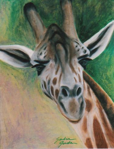 ILUSTRAÇÕES ANIMAIS Girafa10