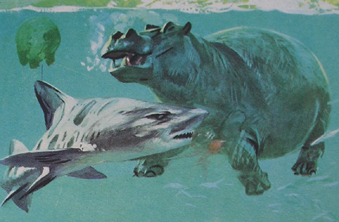 ILUSTRAÇÕES ANIMAIS Hippo_10