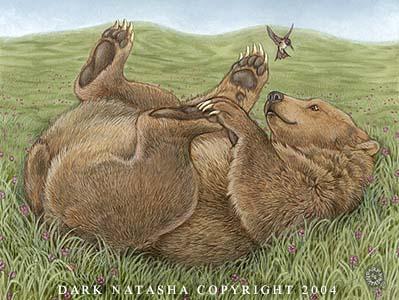 ILUSTRAÇÕES ANIMAIS Urso10