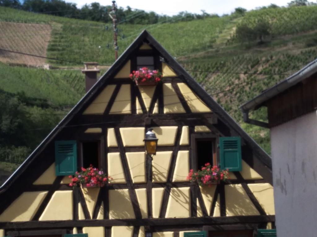 13 et 14 Juillet 2019: les 90 ans de la 201 en Alsace Img_2163