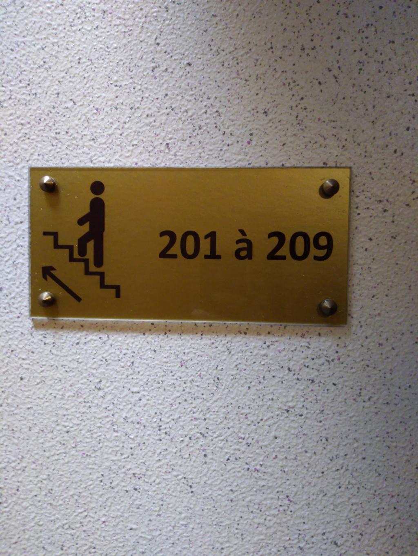 13 et 14 Juillet 2019: les 90 ans de la 201 en Alsace Img_2173