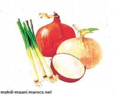 علاج السمنة بالاعشاب البصل يعالج السمنة المفرطة Onion10