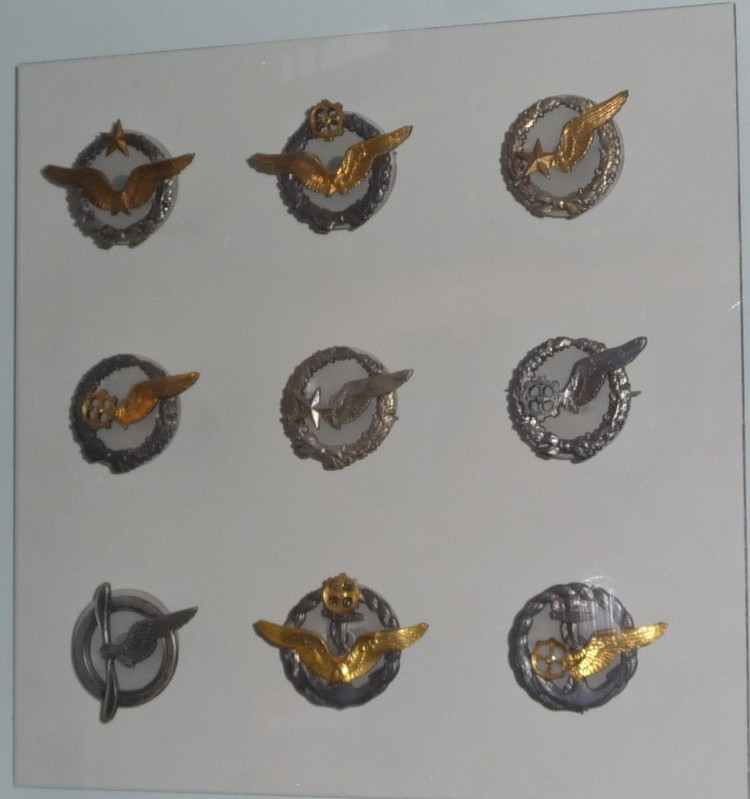 Brevet métallique de pilote Insign10