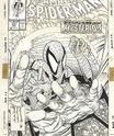 Pour patienter - Page 19 Spider10