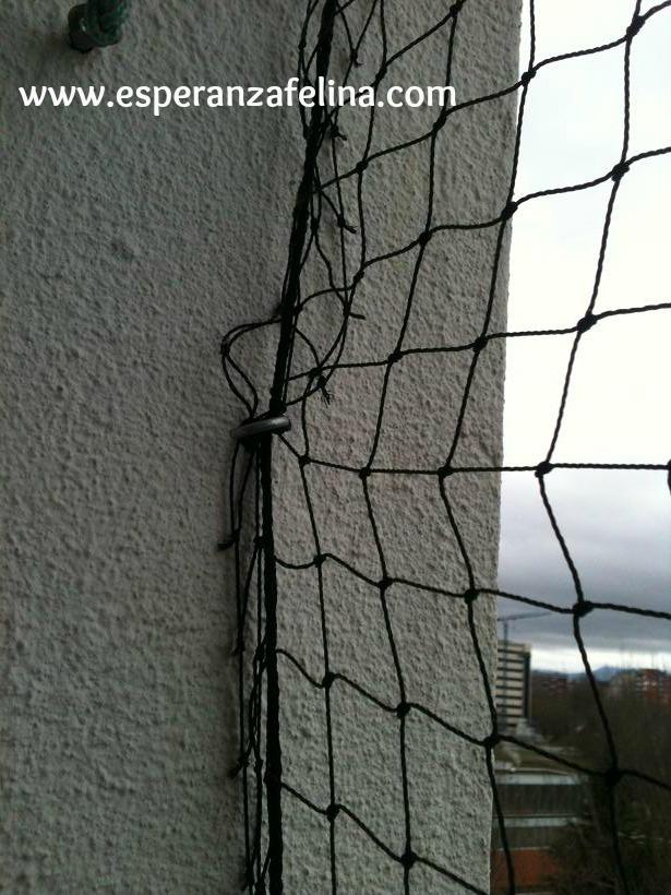 redes - Resumen de ideas para mosquiteras y redes ventanas y balcón para gatos. Img_6415