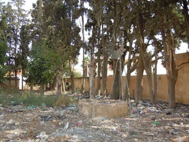 Autres écoles, autres photos  Dscn1315