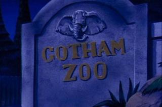 Gotham City Robins12