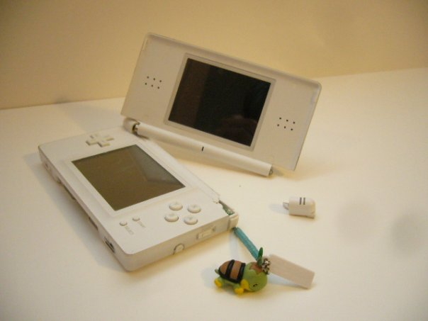 What consoles do you have with you? (Handhelds are also an option) - Page 7 Ds_bro10