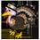 Dinde Blanche, Dinde Noire au Bourbon, Dinde Rouge, Dinde Noire, Dinde de Thanksgiving, Dinde de Noël => Viande de Dinde D_dind12