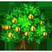 Vous cherchez un arbre ? Venez cliquer ici !!! Muscad11