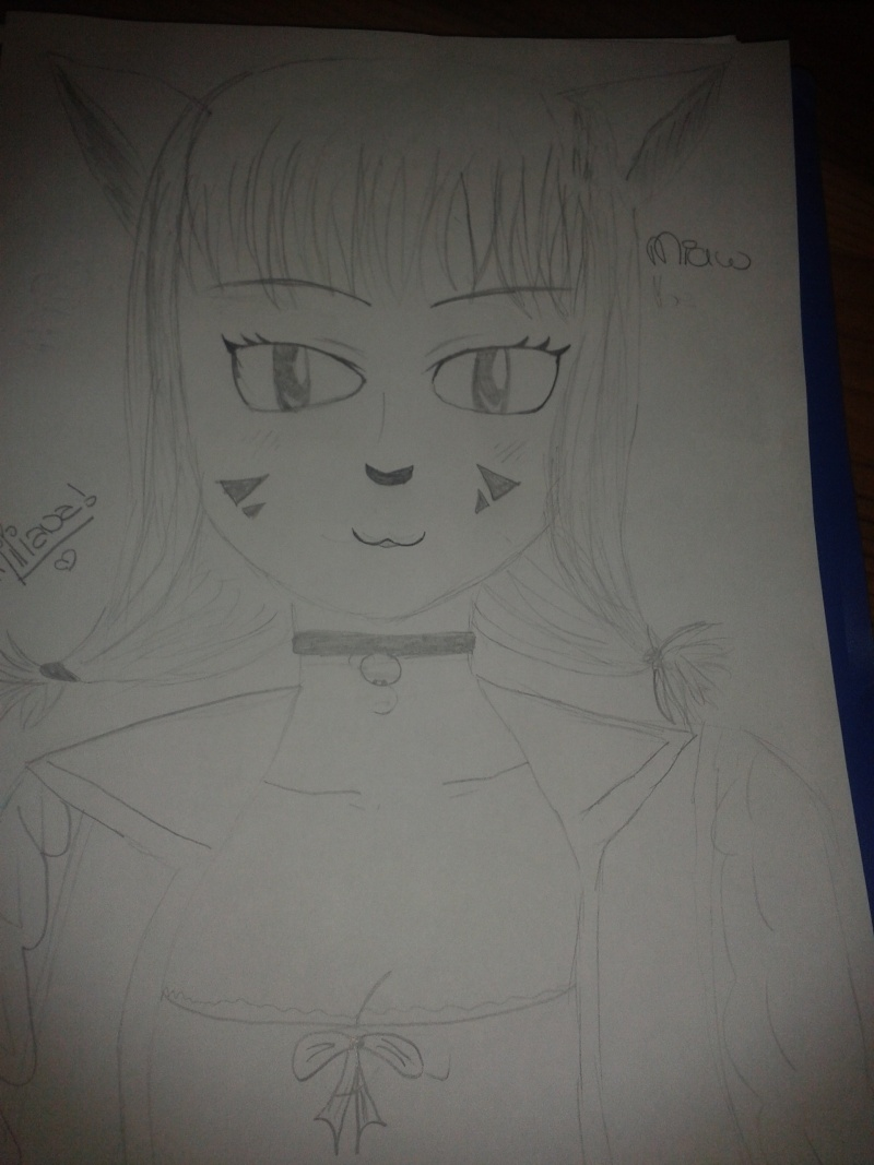 Mon 1er dessin a peu pres bien fait ... 2013-011