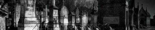 La cour d'exterieur Cimeti10