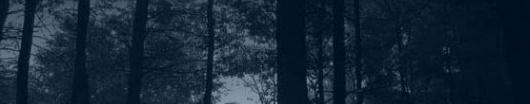 La forêt Forats11