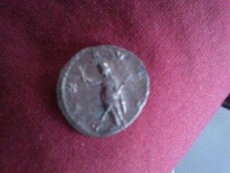 identification romaine 13555817