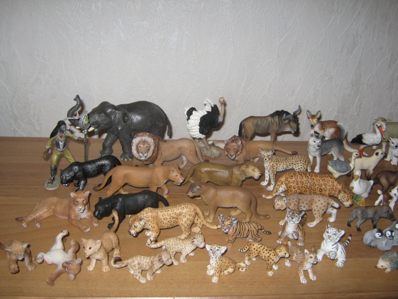 Other animals i bought the last weeks 06310