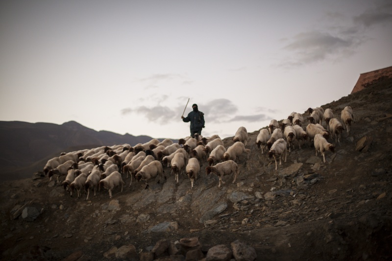 gaaazzz sur le lac iriki au maroc en video _mg_6910