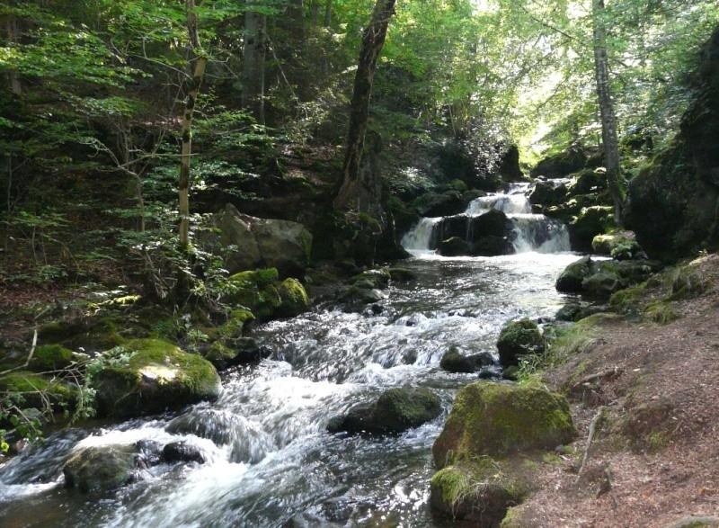 La Rivière Grondante Torren10