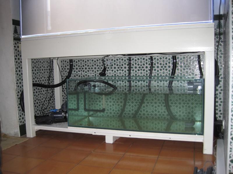 Projet 1000 litres en Jaubert déporté - Page 4 Img_1115