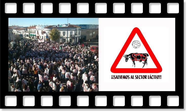 [ALBUM DE FOTOS] Concentración Sector Lácteo 4 Enero 2013 Collag10