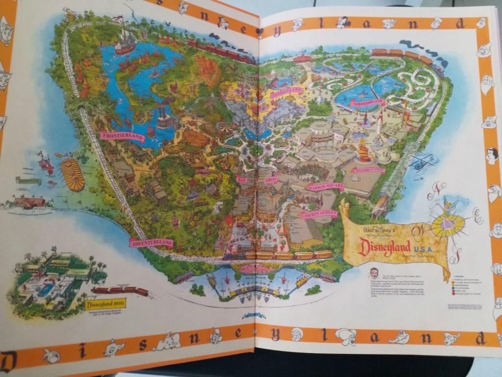 Les livres Disney - Page 2 42555310