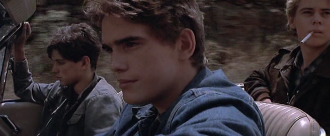 The Outsiders - Francis Ford Coppola - 1983  36966410
