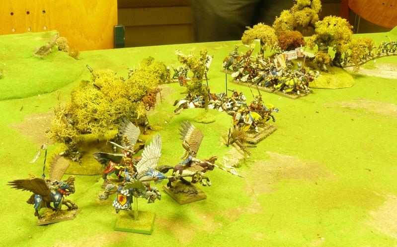 Warhammer Fantasy, Galerie de Batailles P1170746