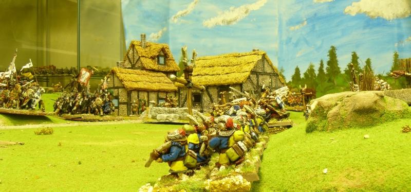 Warhammer Fantasy, Galerie de Batailles P1170748