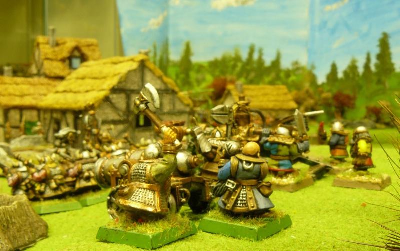 Warhammer Fantasy, Galerie de Batailles P1170749