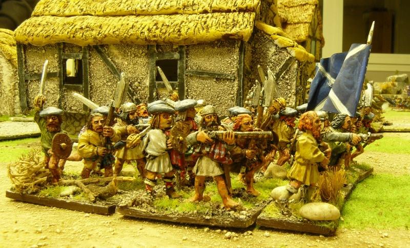 Un peu de guerre civile anglaise ! P1170822