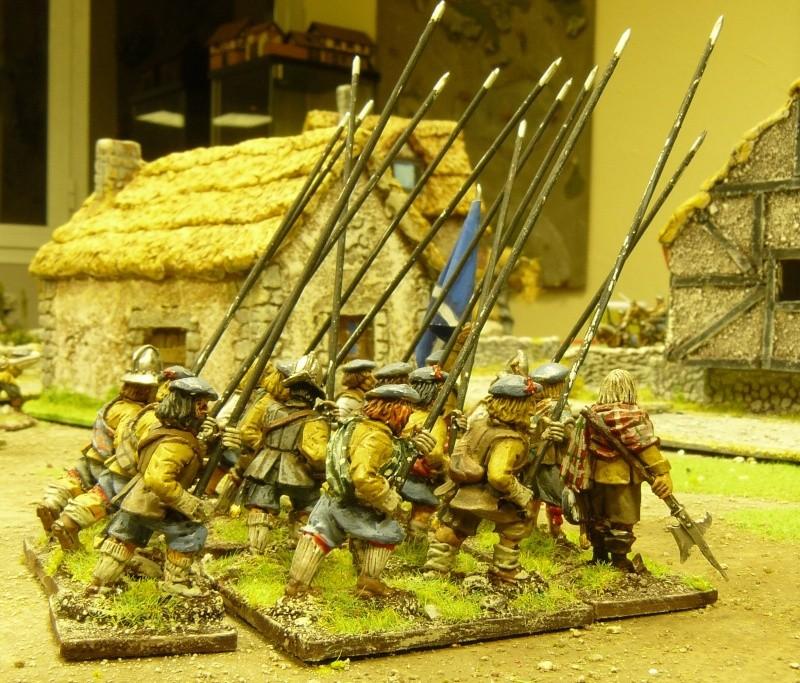 Un peu de guerre civile anglaise ! P1170823