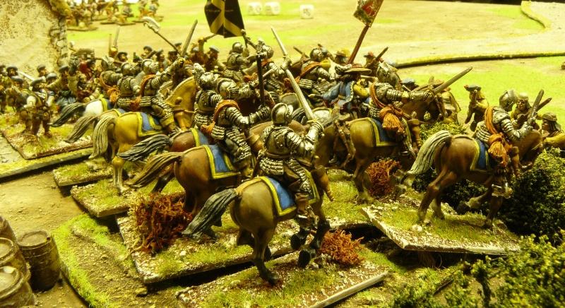 Un peu de guerre civile anglaise ! P1170840