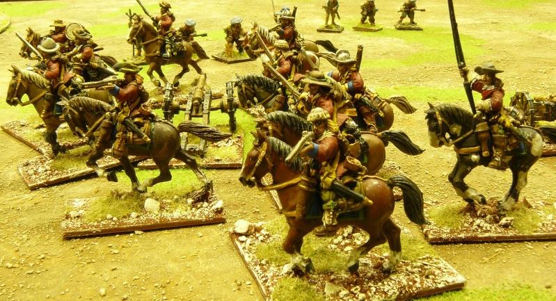 Un peu de guerre civile anglaise ! P1170841