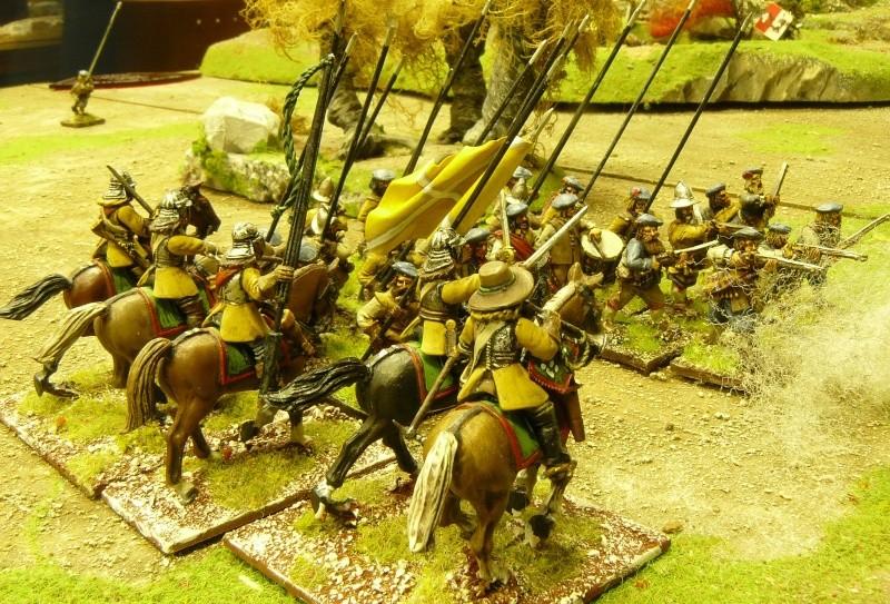 Un peu de guerre civile anglaise ! P1170842