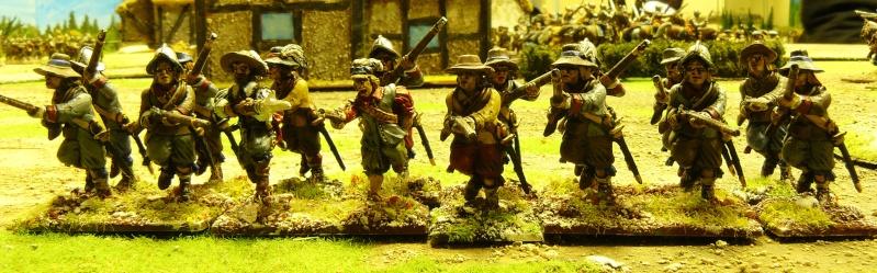 Un peu de guerre civile anglaise ! P1170844