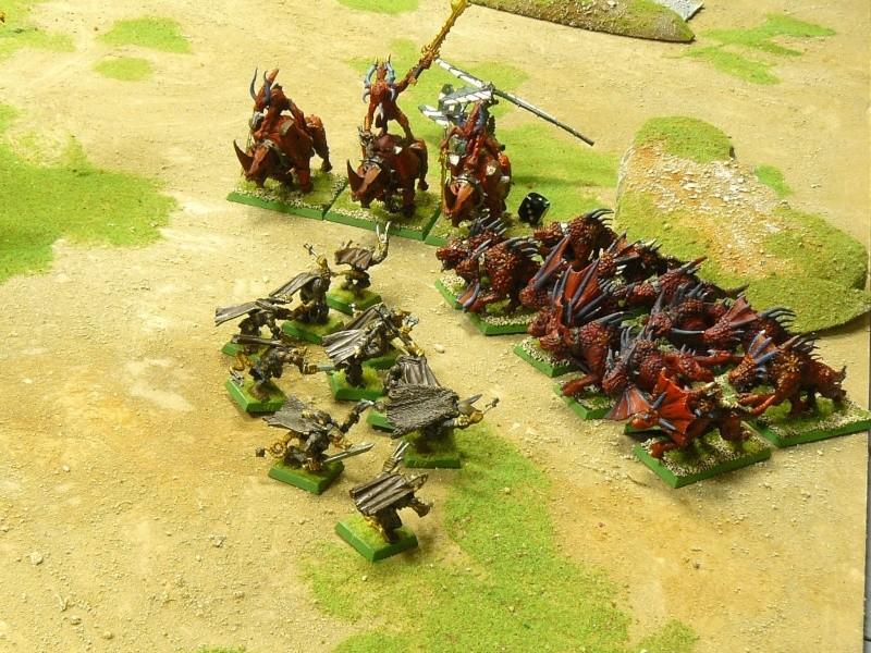 Warhammer Fantasy, Galerie de Batailles P1180013