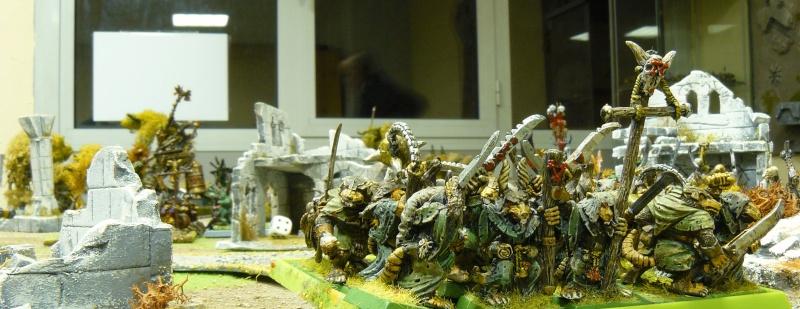 Warhammer Fantasy, Galerie de Batailles P1180019