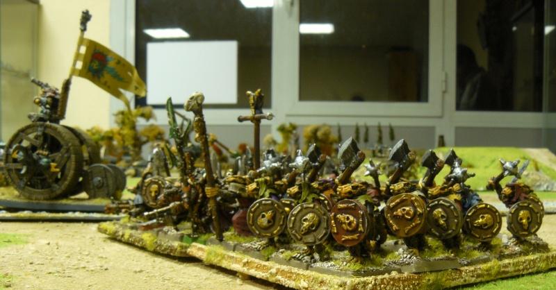 Warhammer Fantasy, Galerie de Batailles P1180043