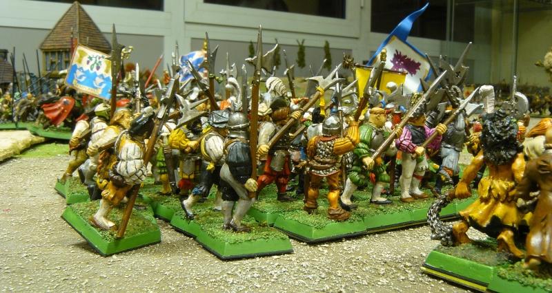 Warhammer Fantasy, Galerie de Batailles P1180045