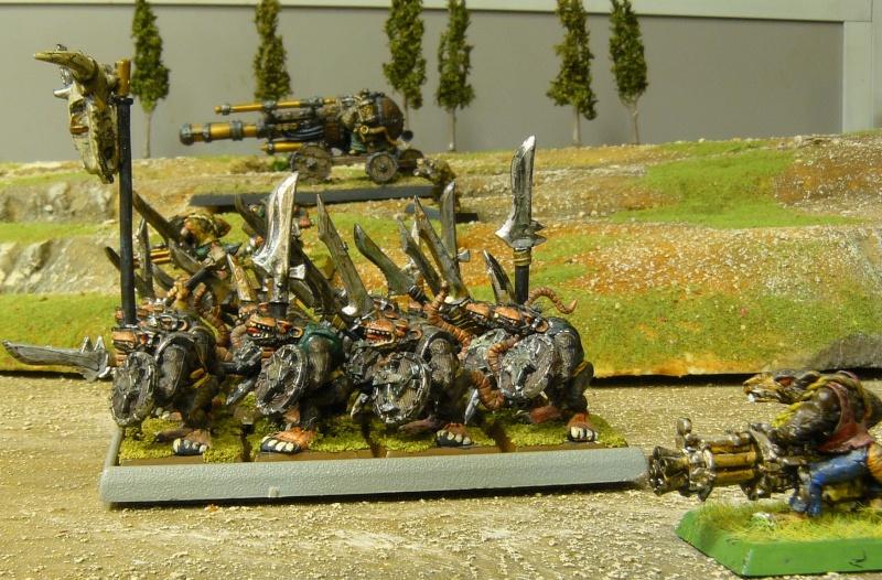 Warhammer Fantasy, Galerie de Batailles P1180049