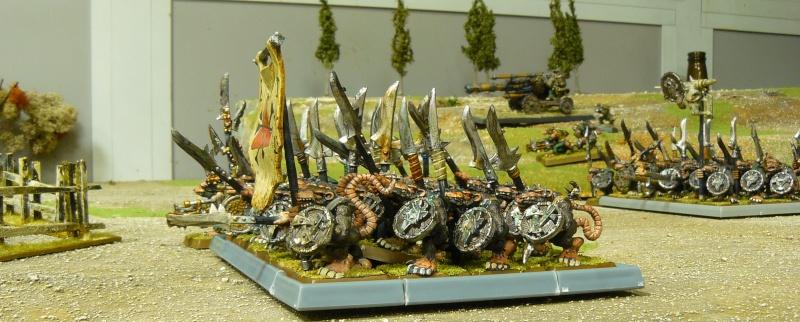 Warhammer Fantasy, Galerie de Batailles P1180050